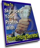 Cover graphic - How To Skyrocket Your Profits With... Proven Pricing Secrets!