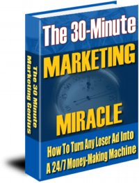Cover graphic: The 30 Minute Marketing Miracle