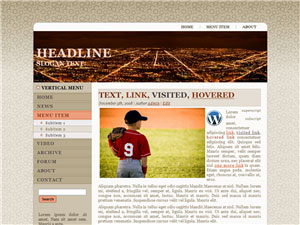 HTML, Drupal, Joomla, and Wordpress BrownNightscape Templates - Wordpress screenshot