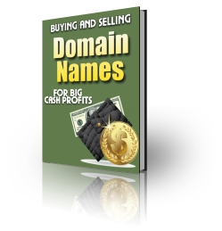 Buying And Selling Domain Names virtual cover
