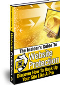 The Insider's Guide To Website Protection cover graphic