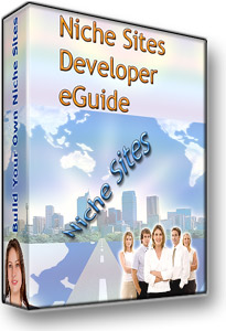 Niche Sites Developers Kit Cover Graphic