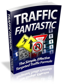 Traffic Fantastic virtual cover
